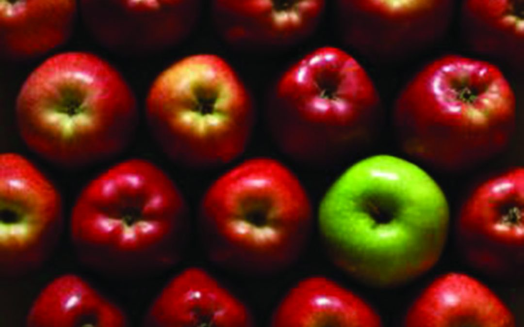 How do your apples grow?