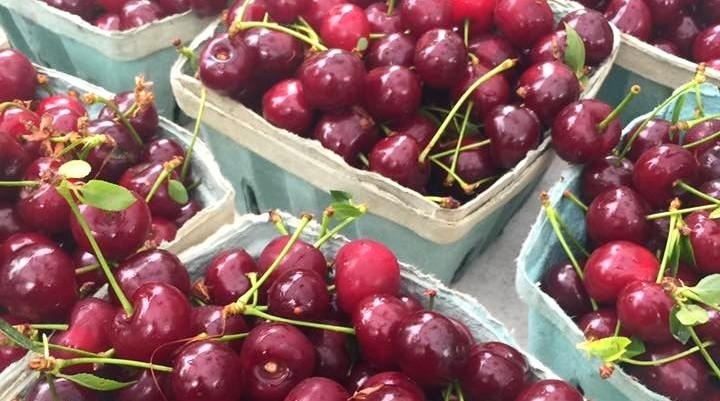 Local cherries are here!