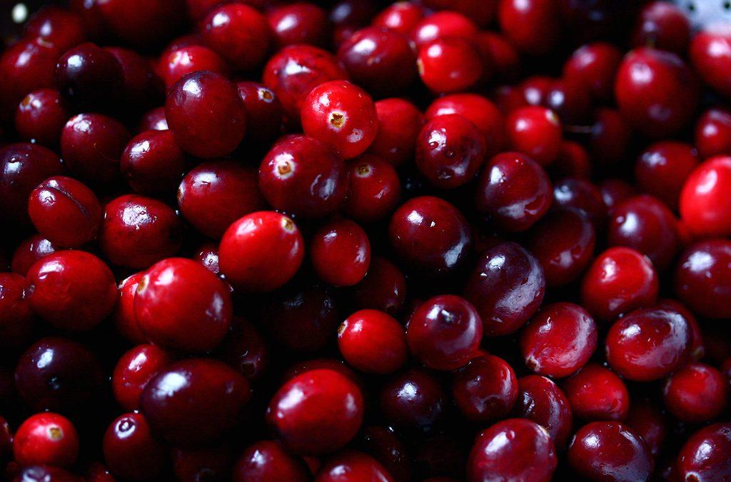 Thanksgiving's Cooking: Cranberry Citrus Relish
